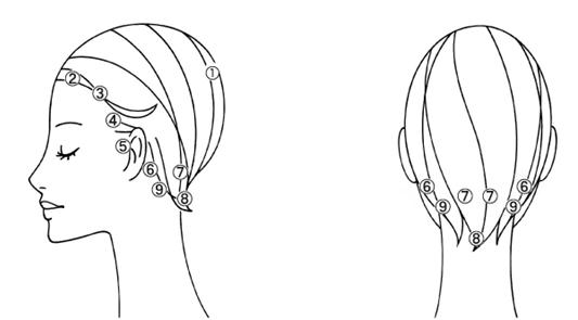 頭のツボ 図