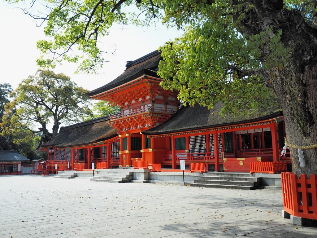 宇佐神宮 5