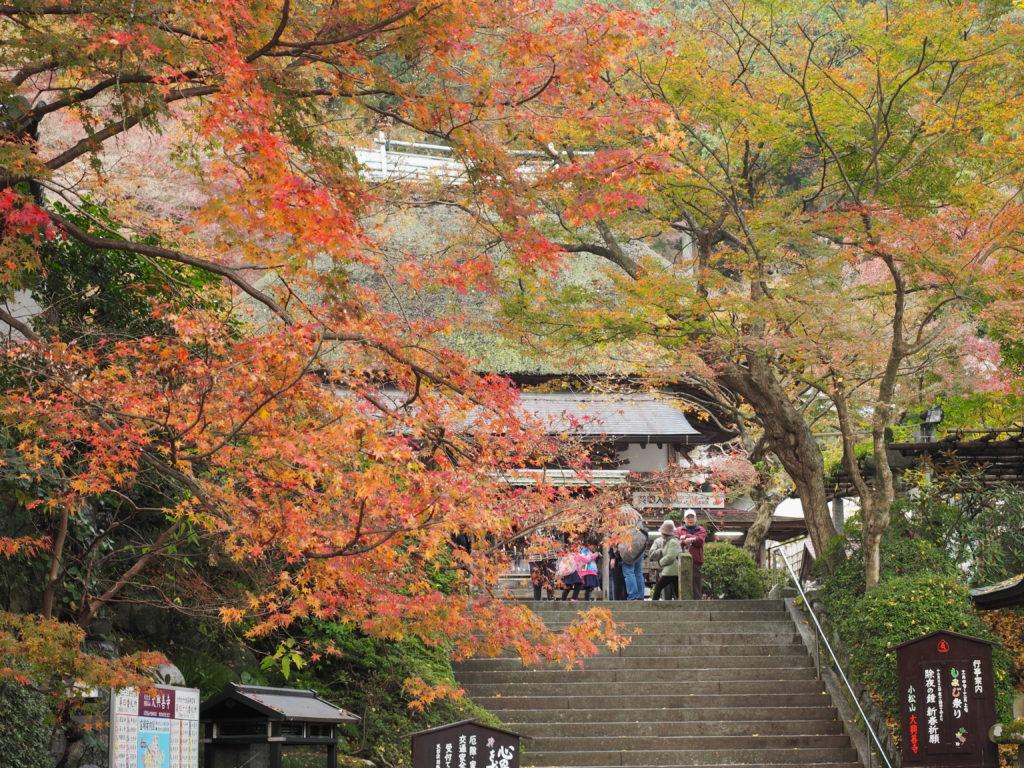 大興善寺 2