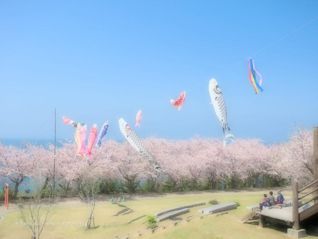 2019粟嶋公園2