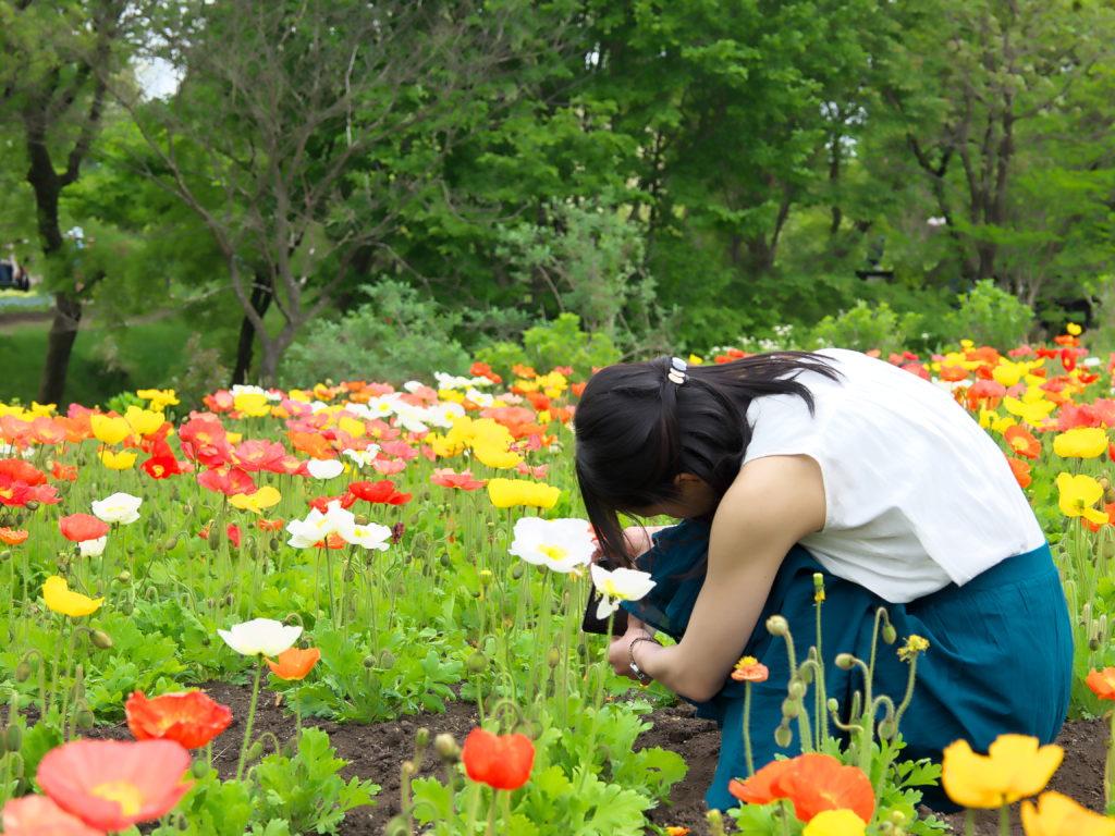 くじゅう花公園2