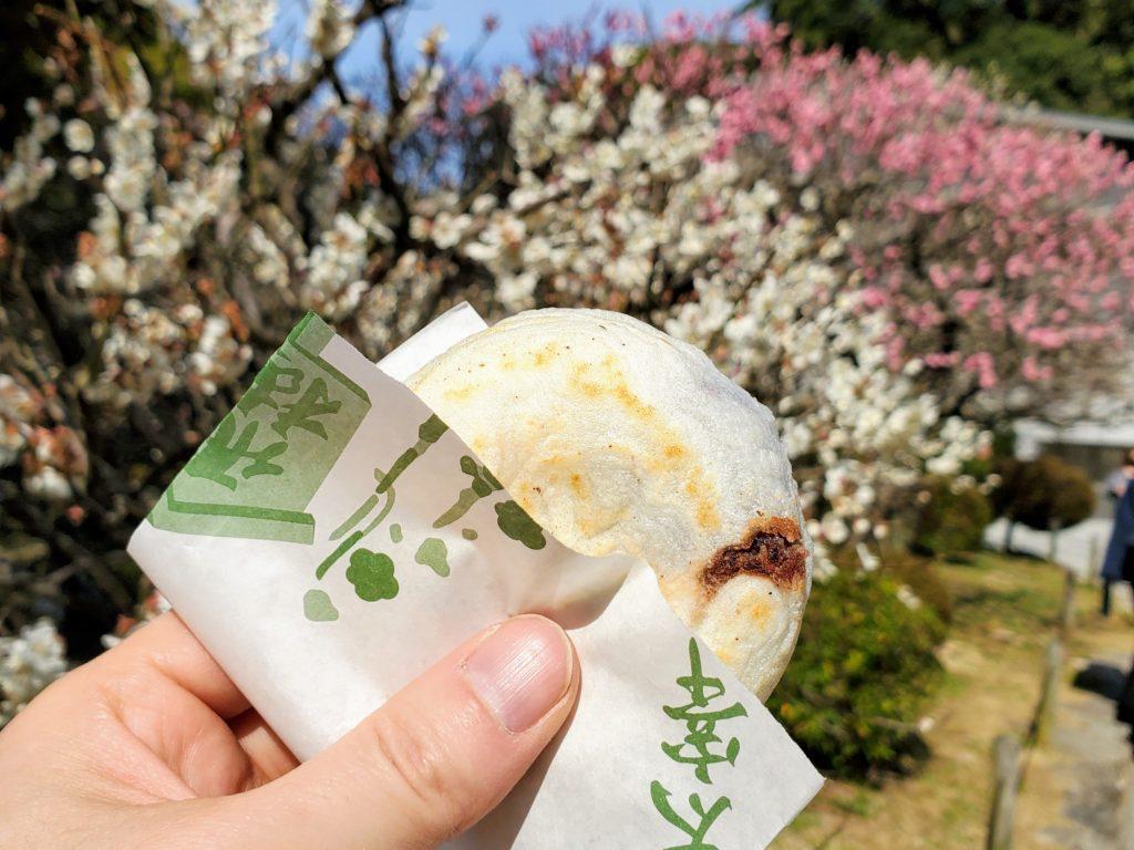 梅と梅ヶ枝餅